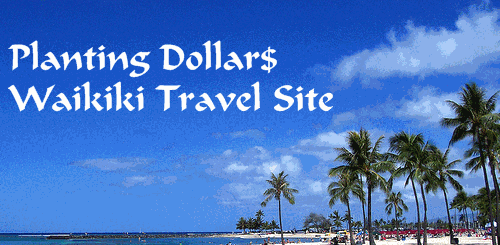 Post image for Waikiki Site – Sizing up Your Online Competition