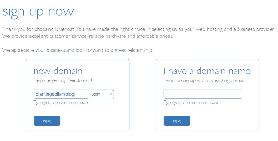 Choosing a Domain Name Bluehost